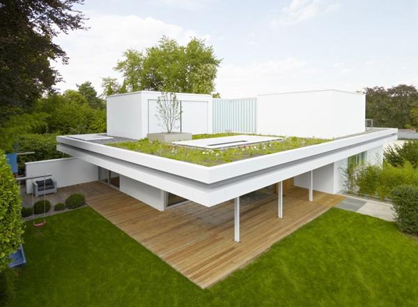 Simple Rooftop Garden