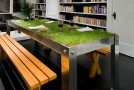 picnyc urban grass table