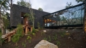 ranco house forest in chile