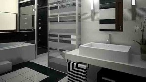 luxurious black and white bathrooms