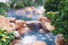 choose water feature