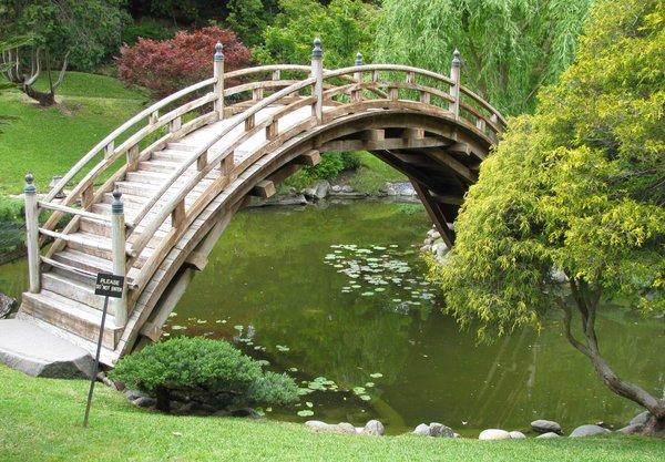 wooden curve bridge