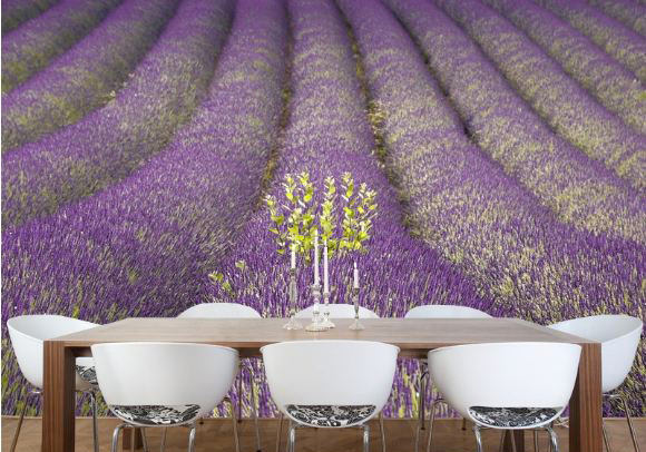 Lavender Field in Provence Wall Mural