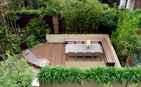 evergreen planting - Courtyard Design Ideas