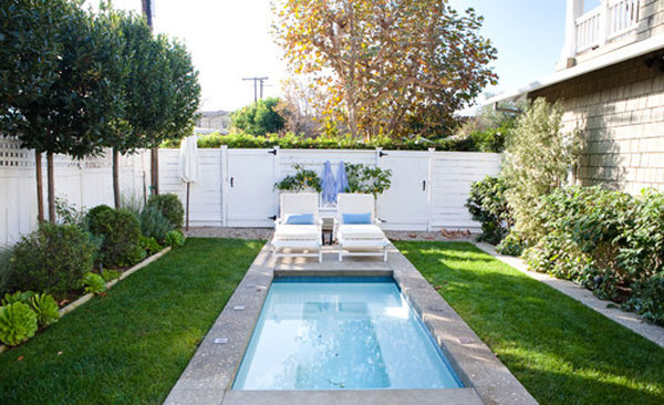 small swimming pool - Backyard Pool Design Ideas