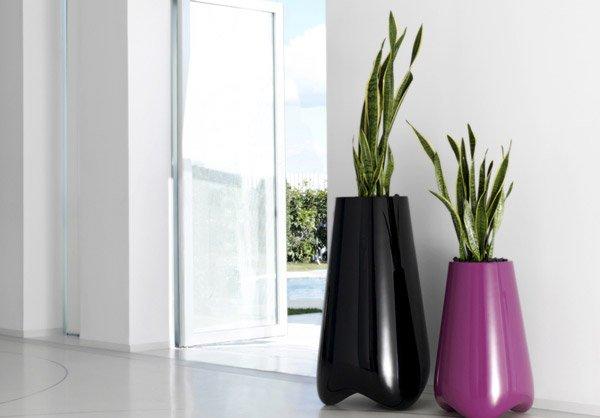 Bright Vase
