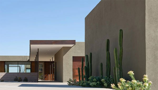 cactus plants ibarra rosano design architects - Desert Landscape Design Ideas