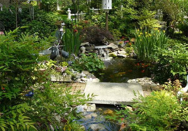 pond landscape designs