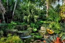 tropical garden tips