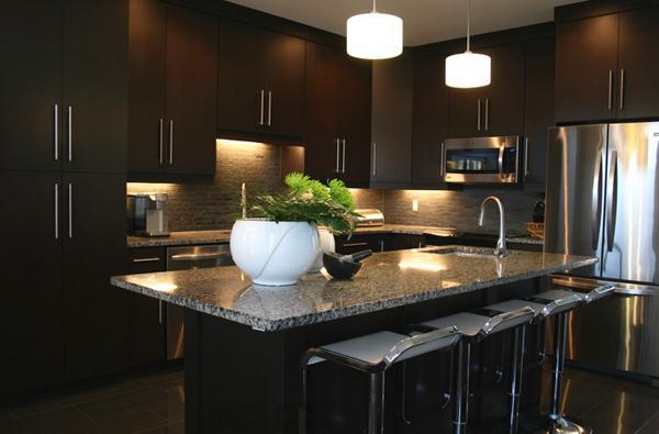 Beautiful Dark Kitchens 14 best dark kitchen cabinets design - home interior help