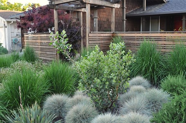 garden design with landscaping ideas using grass plants home design lover with flower garden ideas from - Garden Design Using Grasses