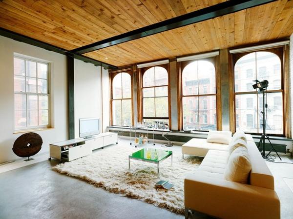 animal fur living room