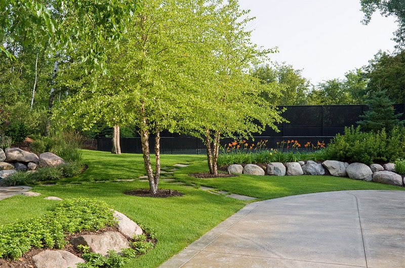 22 Tree Shade Landscaping Ideas For Your Yards Home