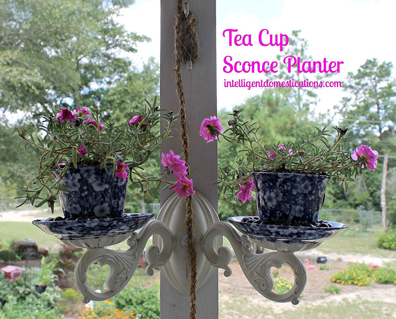 Tea Cup Sconce Planter Repurpose Project
