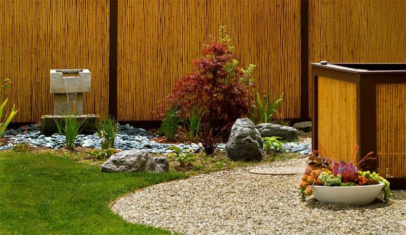bamboo - Fence Design Ideas