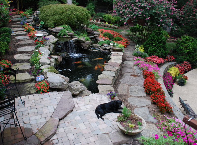 outdoor koi ponds