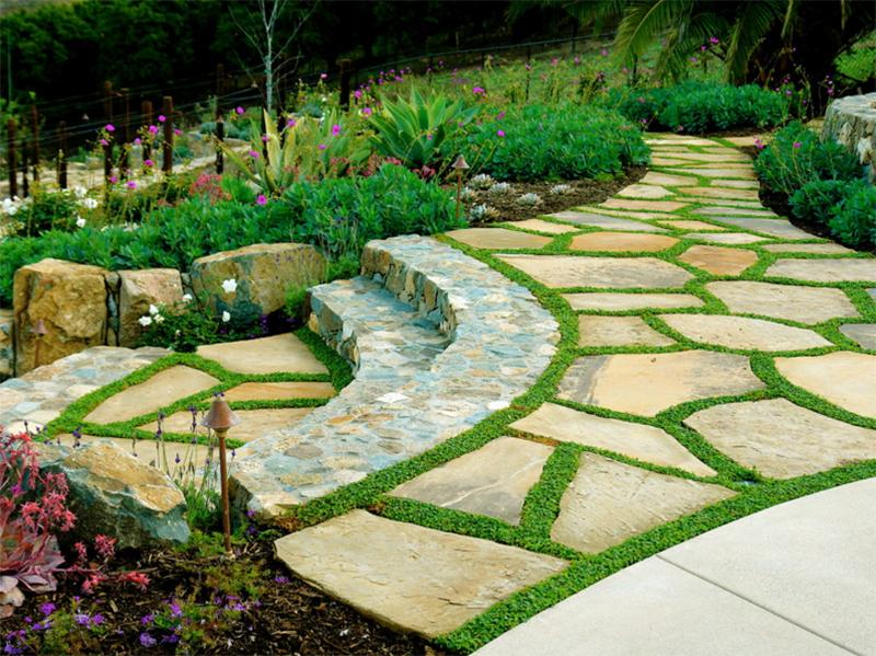tiny flowers pathway
