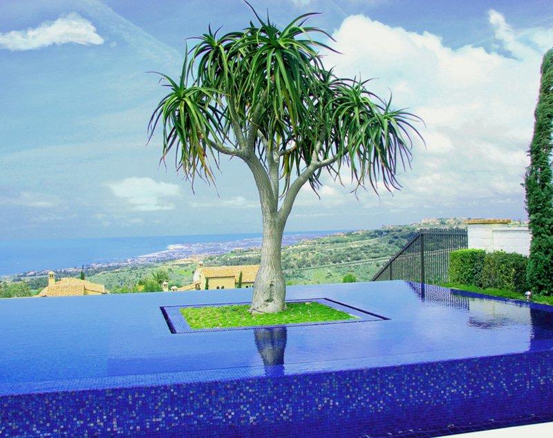 pool planters designs