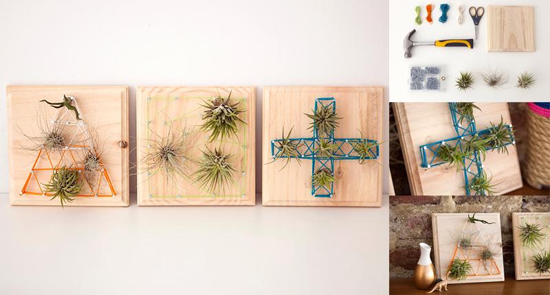 DIY Air Plants String Art