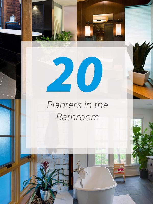 bathroom planter