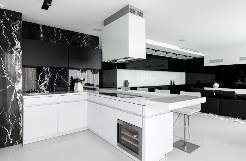Black and White apartment kitchen cabinets