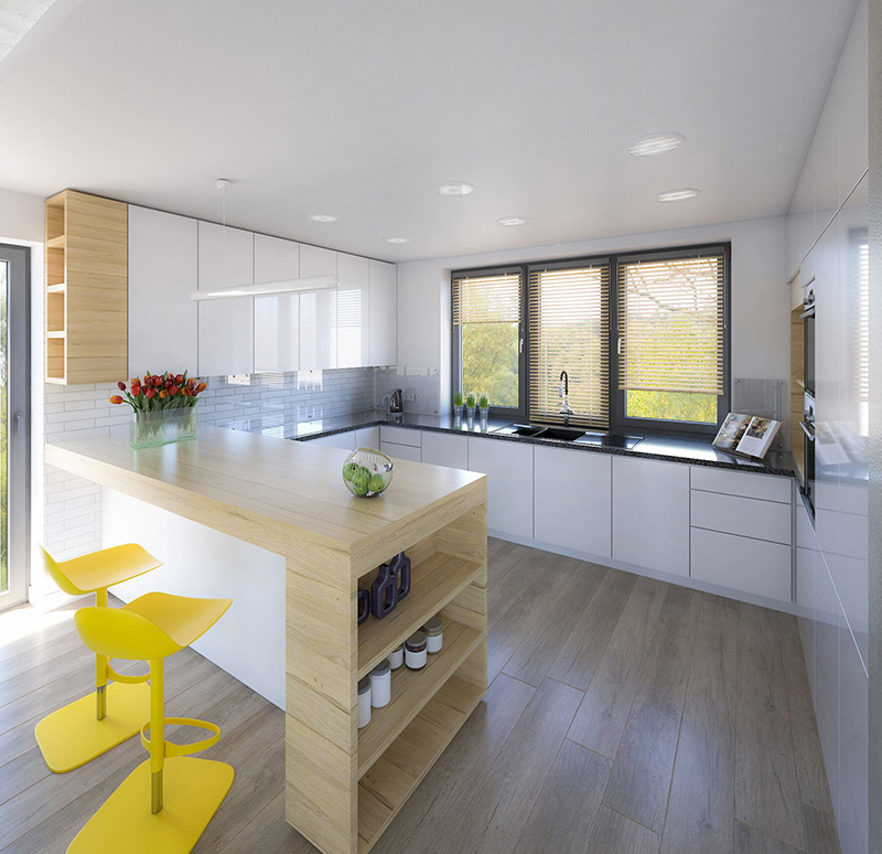 Kitchen - interior visualization