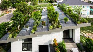 roof garden vietnam