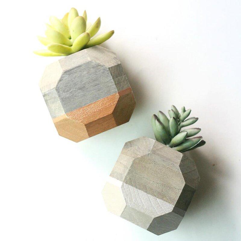 DIY Geometric Succulent Planters